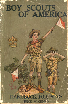 2nd Edition Cover, Third Version (olive green background)